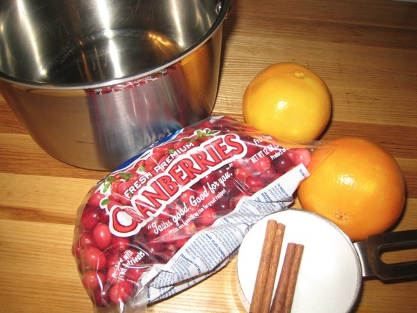 Ingredients for home made cranberry sauce