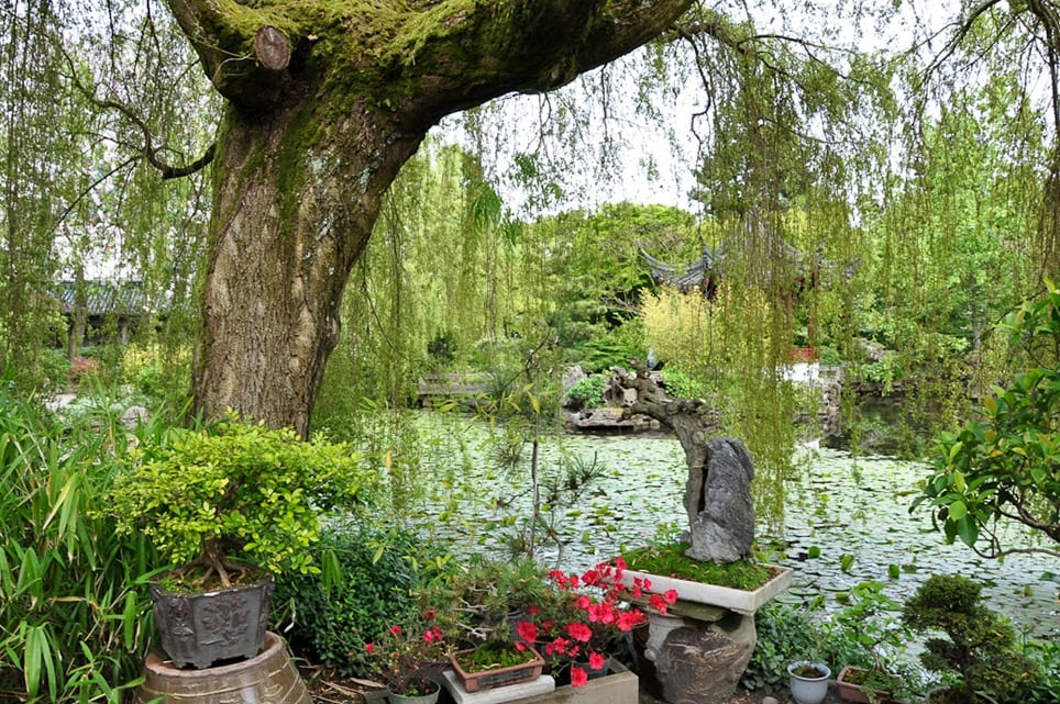 Enter the Year of the Dragon in Vancouver\'s Chinese Garden - Albany ...