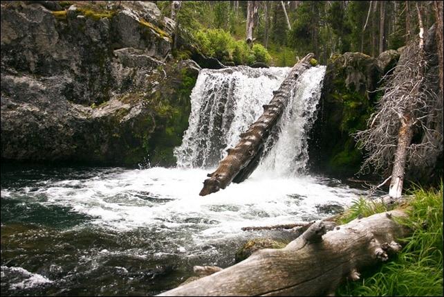 Backcountry waterfall - Yellowstone National Park