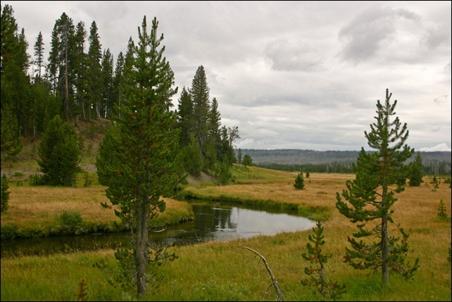 Little Firehole Meadows - Yellowstone National Park