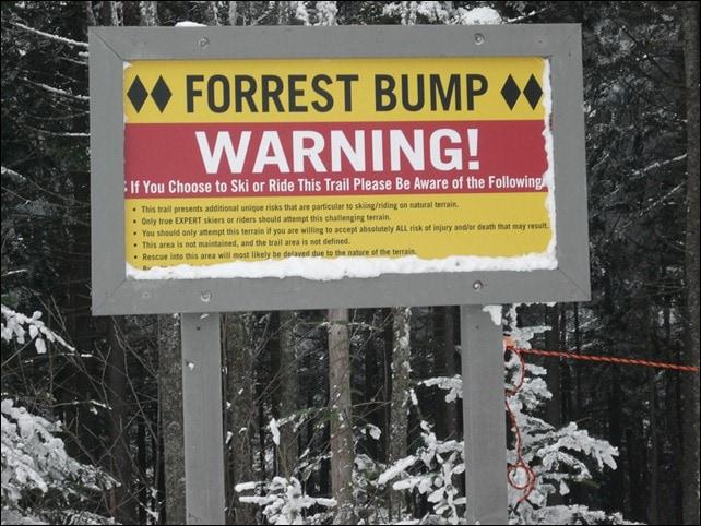 Okemo Forrest Bump