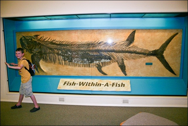 Sternberg Museum Fish-within-a-fish -1