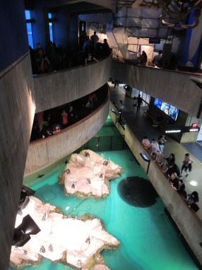 Giant Ocean tank and part of the penguin exhibit, New England Aquarium