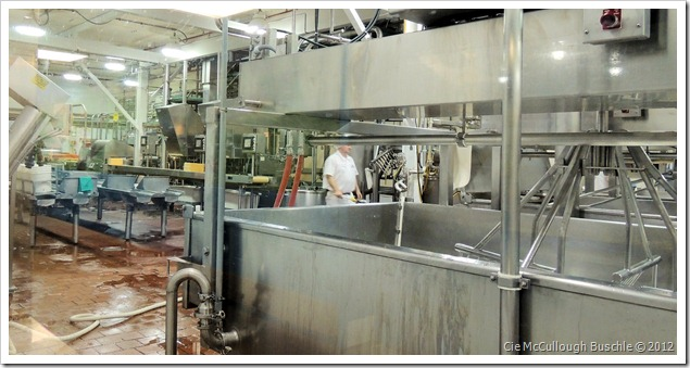 Cabot Creamery Factory Tour, Cabot Vermont