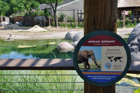 Cleveland Zoo - African Elephant Crossing Exhibit