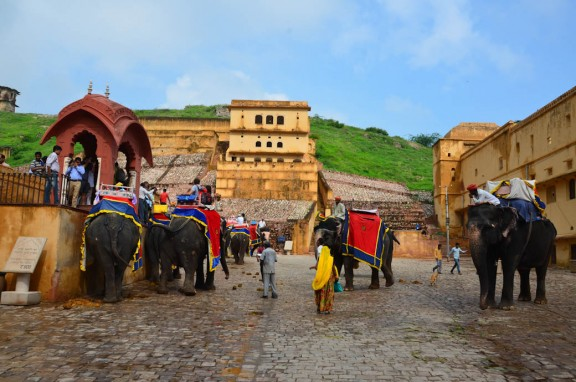Waiting in line for the Amber Fort elephant ride - Jaipur, India