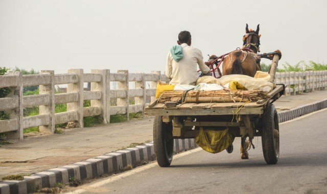 horse-drawn cart on the road to Agra