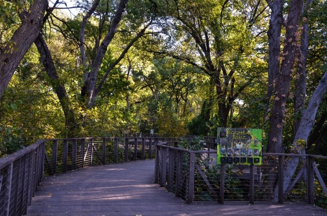Texas Native Forest Boardwalk - Fort Worth Botanic Garden