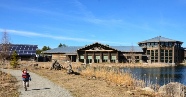 Wild Center - exterior shot, young child running on path by the pond.