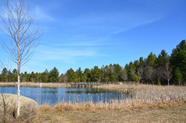 Wild Center - view of pond in the Adirondacks landscape.