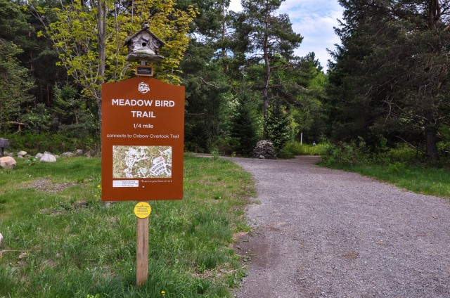Wild Center - Meadow Bird Trail