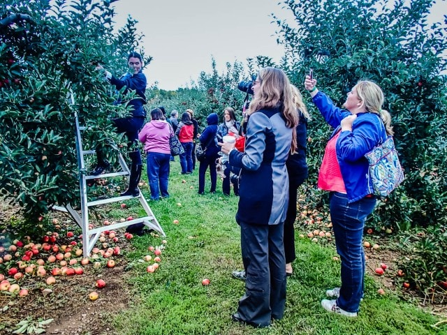 Apple Picking with Bloggers - TMS Family Travel - Niagara Falls, NY