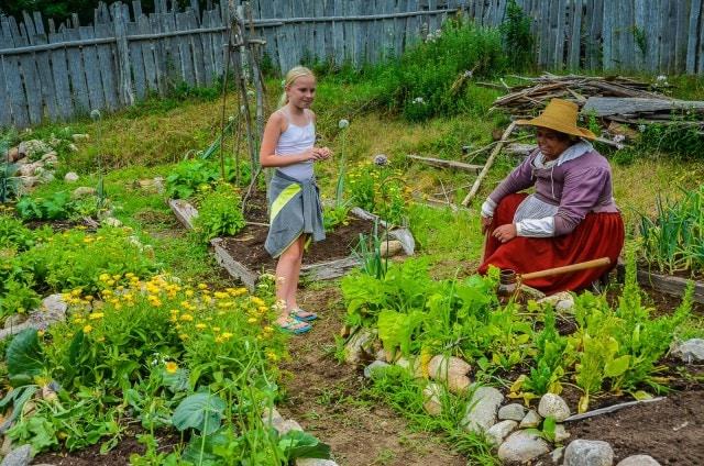 Colonial Garden - Plimoth Colony