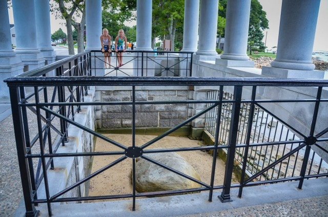 Plymouth Rock fence and shelter